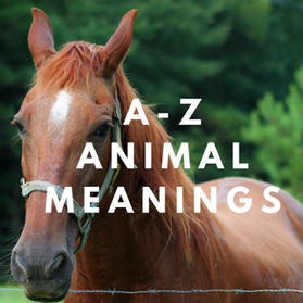 A-Z spiritual animal meanings